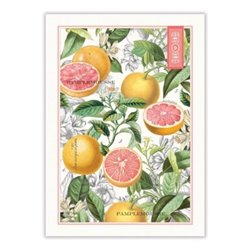 Pink Grapefruit Kitchen Towel