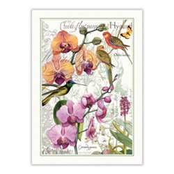Orchids In Bloom Kitchen Towel