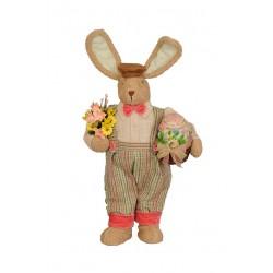Mr. Coral Bunny