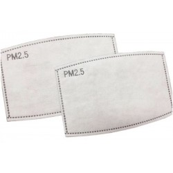 Replaceable 5 Layer Filter 2 Pack