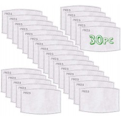 Replacement PM2.5 Filters (Bulk 30 Pack)