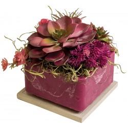 """Desert Rose 6"""" Square Fragranced GEO"""