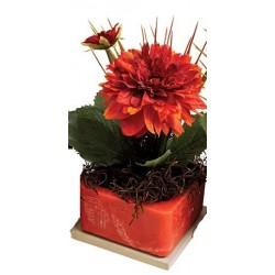 "Red Dahlia 8"" Square Fragranced GEO"