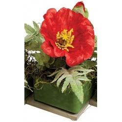 "Red Poppy Dahlia 8"" Square Fragranced GEO"
