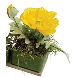 "Yellow Poppy Dahlia 8"" Square Fragranced GEO"